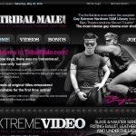 Tribal Male Full Videos