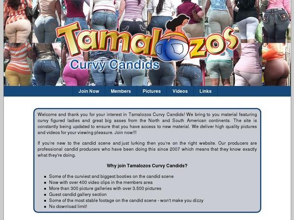 Free Tamalozos Curvy Candids Premium Account