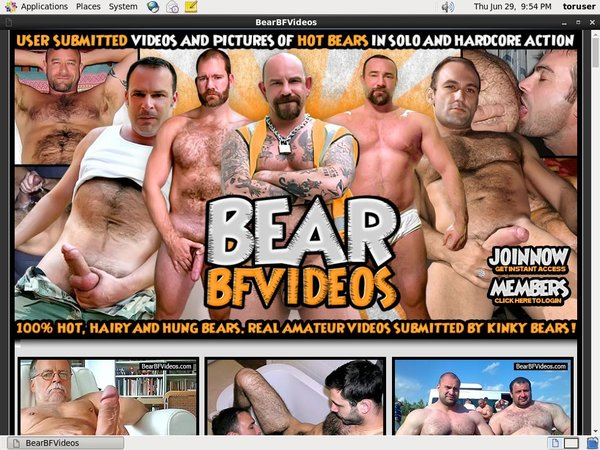 Bear BF Videos Accounts Working