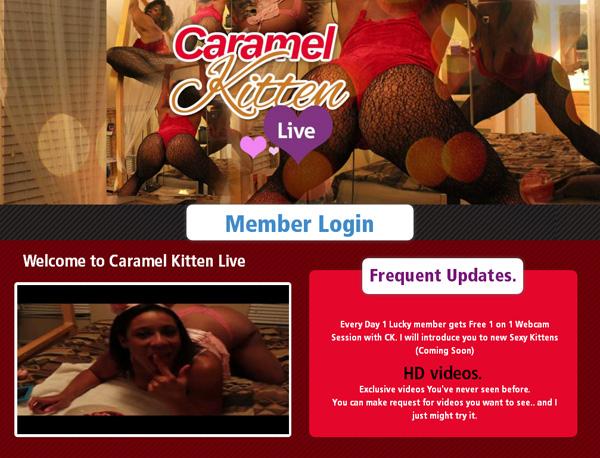 Paypal Caramel Kitten Live Sign Up