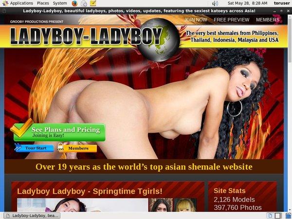 Ladyboy Ladyboy Ccbill