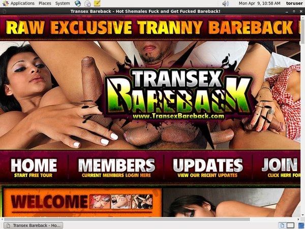 Bareback Transex Trial Free