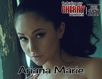 Cherry Pimps Hardcore Porn