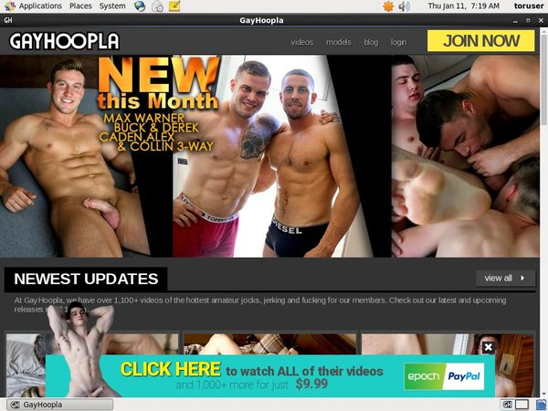 Gay Hoopla Limited Deal