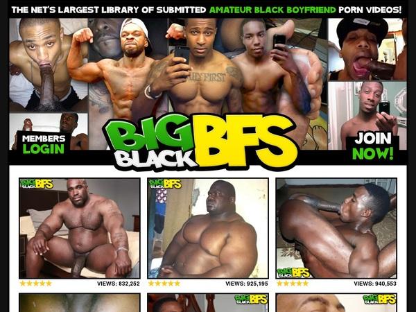 Bigblackbfs.com Account Free